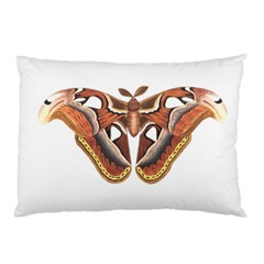 Butterfly Animal Insect Isolated Pillow Case (two Sides)