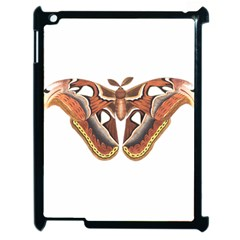 Butterfly Animal Insect Isolated Apple iPad 2 Case (Black)