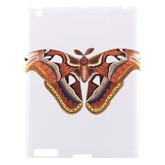 Butterfly Animal Insect Isolated Apple iPad 3/4 Hardshell Case