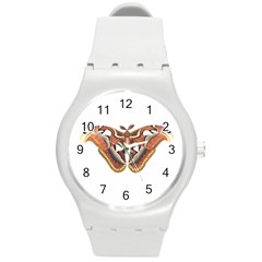 Butterfly Animal Insect Isolated Round Plastic Sport Watch (M)