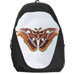 Butterfly Animal Insect Isolated Backpack Bag