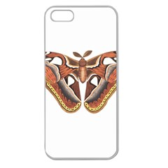 Butterfly Animal Insect Isolated Apple Seamless iPhone 5 Case (Clear)