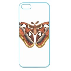Butterfly Animal Insect Isolated Apple Seamless iPhone 5 Case (Color)