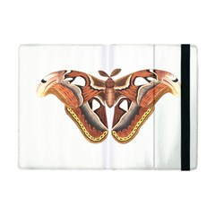 Butterfly Animal Insect Isolated Apple iPad Mini Flip Case