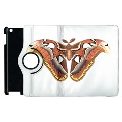Butterfly Animal Insect Isolated Apple iPad 2 Flip 360 Case