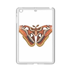 Butterfly Animal Insect Isolated iPad Mini 2 Enamel Coated Cases