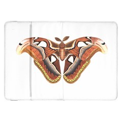 Butterfly Animal Insect Isolated Samsung Galaxy Tab 8.9  P7300 Flip Case