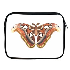Butterfly Animal Insect Isolated Apple iPad 2/3/4 Zipper Cases
