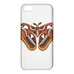 Butterfly Animal Insect Isolated Apple iPhone 5C Hardshell Case