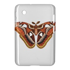 Butterfly Animal Insect Isolated Samsung Galaxy Tab 2 (7 ) P3100 Hardshell Case