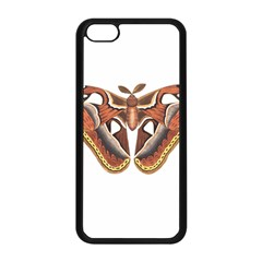 Butterfly Animal Insect Isolated Apple iPhone 5C Seamless Case (Black)