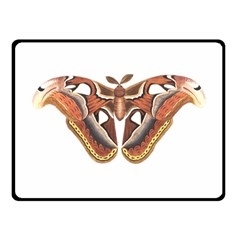 Butterfly Animal Insect Isolated Double Sided Fleece Blanket (small)