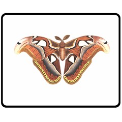 Butterfly Animal Insect Isolated Double Sided Fleece Blanket (Medium)