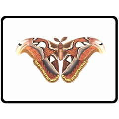 Butterfly Animal Insect Isolated Double Sided Fleece Blanket (Large)