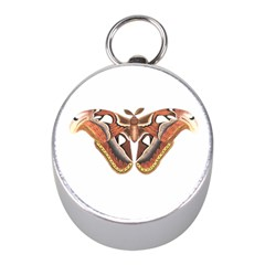 Butterfly Animal Insect Isolated Mini Silver Compasses