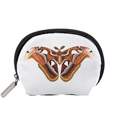 Butterfly Animal Insect Isolated Accessory Pouches (Small)