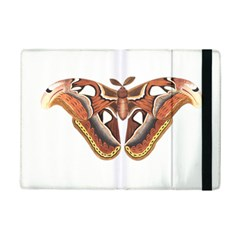 Butterfly Animal Insect Isolated iPad Mini 2 Flip Cases