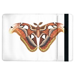 Butterfly Animal Insect Isolated iPad Air Flip