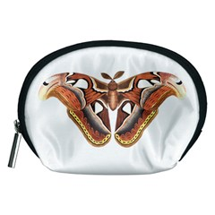 Butterfly Animal Insect Isolated Accessory Pouches (Medium)