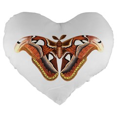 Butterfly Animal Insect Isolated Large 19  Premium Flano Heart Shape Cushions