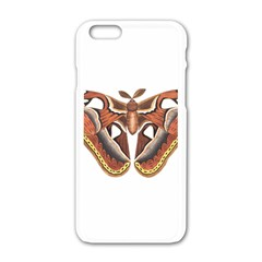 Butterfly Animal Insect Isolated Apple iPhone 6/6S White Enamel Case