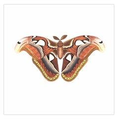 Butterfly Animal Insect Isolated Large Satin Scarf (Square)