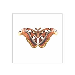 Butterfly Animal Insect Isolated Satin Bandana Scarf