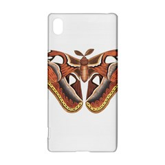 Butterfly Animal Insect Isolated Sony Xperia Z3+