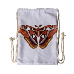 Butterfly Animal Insect Isolated Drawstring Bag (Small)