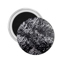 Fern Raindrops Spiderweb Cobweb 2.25  Magnets