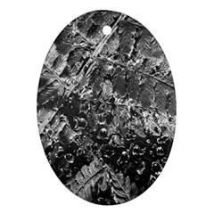 Fern Raindrops Spiderweb Cobweb Ornament (oval)