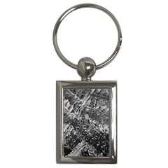 Fern Raindrops Spiderweb Cobweb Key Chains (Rectangle)