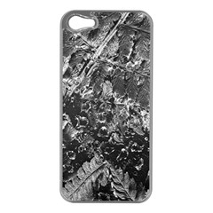 Fern Raindrops Spiderweb Cobweb Apple iPhone 5 Case (Silver)