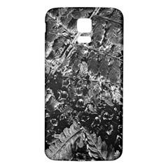 Fern Raindrops Spiderweb Cobweb Samsung Galaxy S5 Back Case (White)