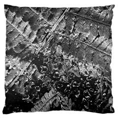 Fern Raindrops Spiderweb Cobweb Large Flano Cushion Case (One Side)