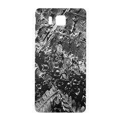 Fern Raindrops Spiderweb Cobweb Samsung Galaxy Alpha Hardshell Back Case