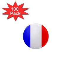 Shield on the French Senate Entrance 1  Mini Magnets (100 pack)