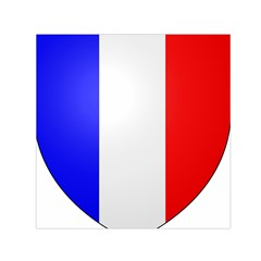 Shield on the French Senate Entrance Small Satin Scarf (Square)