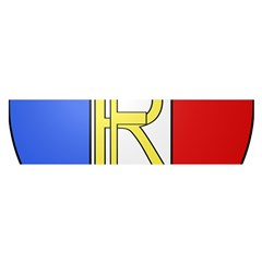 Semi-Official Shield of France Satin Scarf (Oblong)