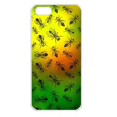 Insect Pattern Apple iPhone 5 Seamless Case (White)