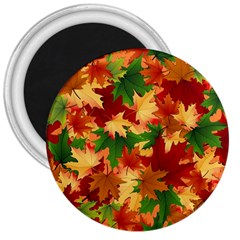 Autumn Leaves 3  Magnets