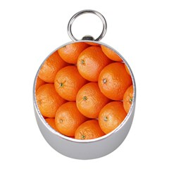Orange Fruit Mini Silver Compasses