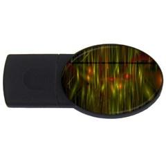 Fractal Rain USB Flash Drive Oval (1 GB)