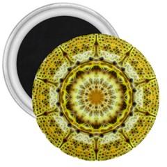 Fractal Flower 3  Magnets