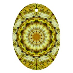Fractal Flower Oval Ornament (Two Sides)