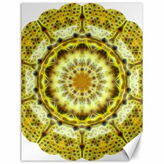 Fractal Flower Canvas 12  X 16