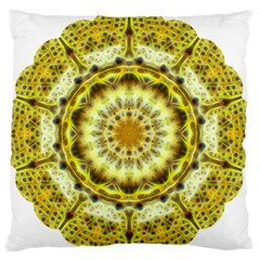 Fractal Flower Large Flano Cushion Case (Two Sides)