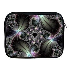 Beautiful Curves Apple iPad 2/3/4 Zipper Cases
