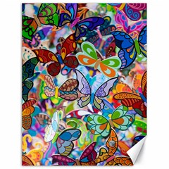 Color Butterfly Texture Canvas 18  X 24
