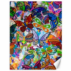 Color Butterfly Texture Canvas 36  X 48